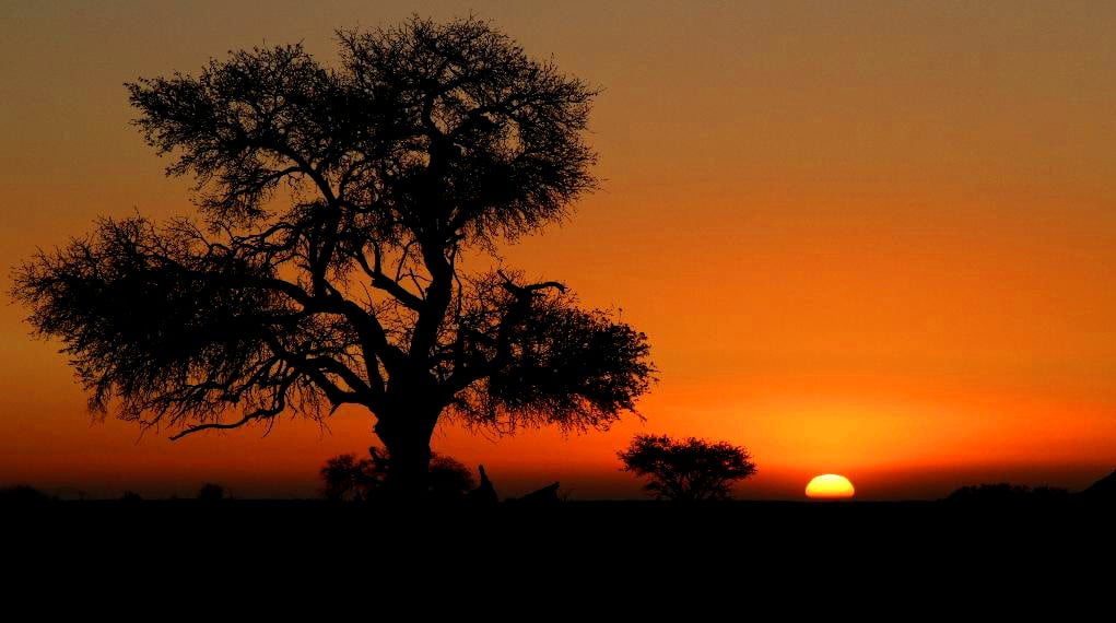 Abendliches Farbenspiel. (Play of colours in Namibia.)
