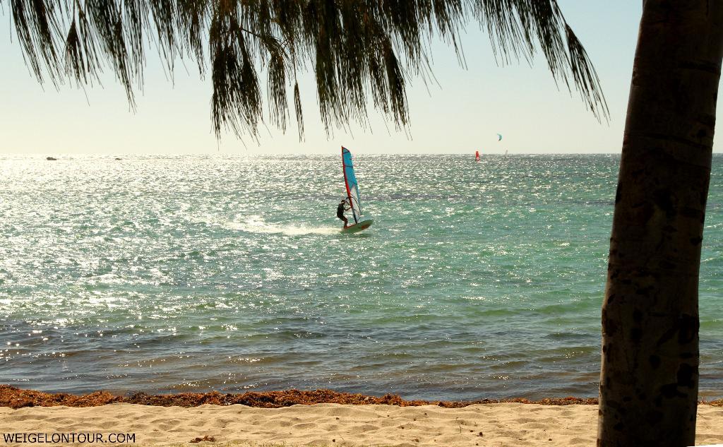 Die Westküste ist ein Paradies für Surfer.