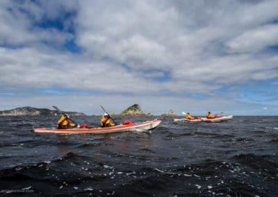 Seekajak-Expedition in Tasmanien.